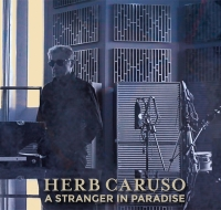Out Now! A Stranger in Paradise (Christmas Edition)